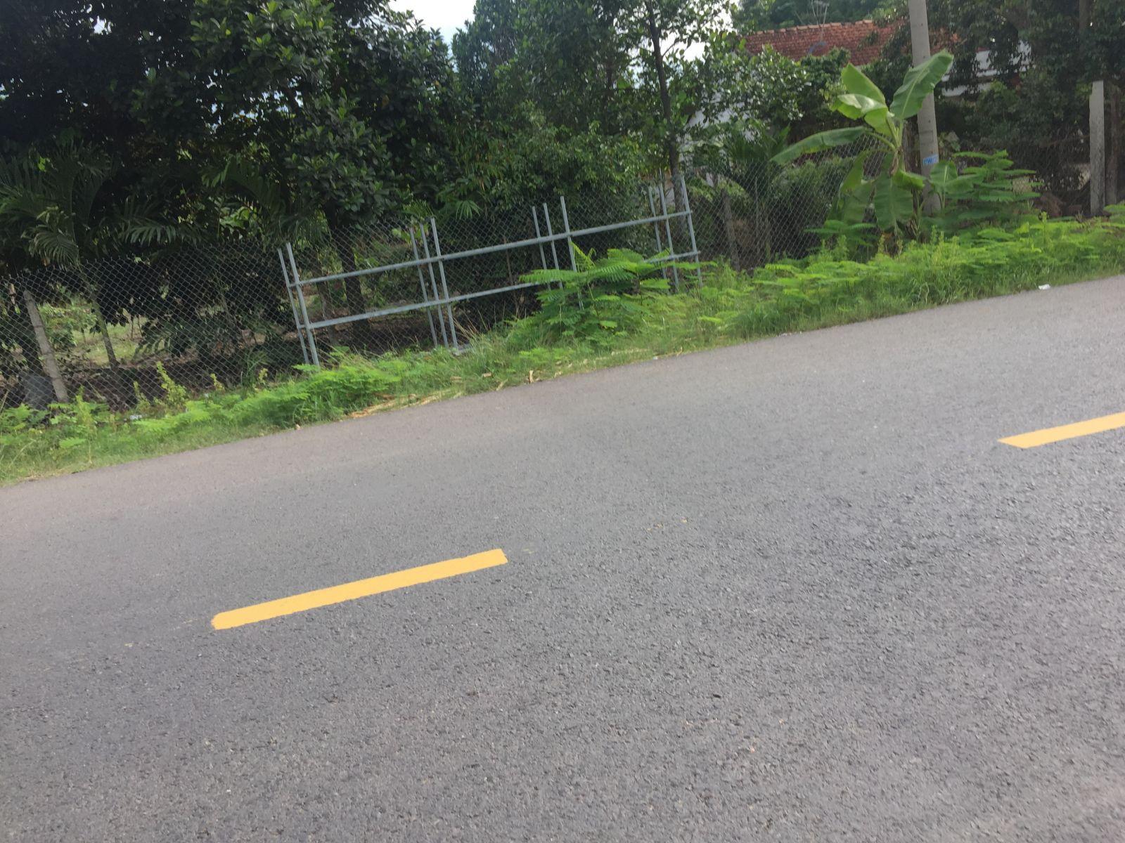 241m2 Đất mặt tiền đường cây gõ xã An Phú